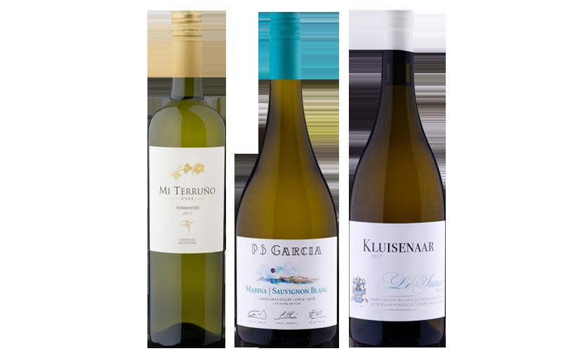 Online Weinprobe Weisswein