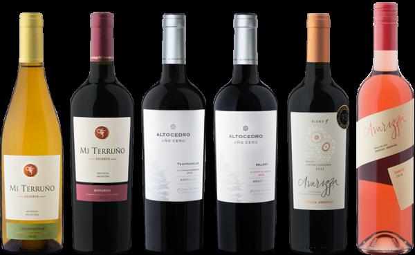 Mendoza Weinpaket