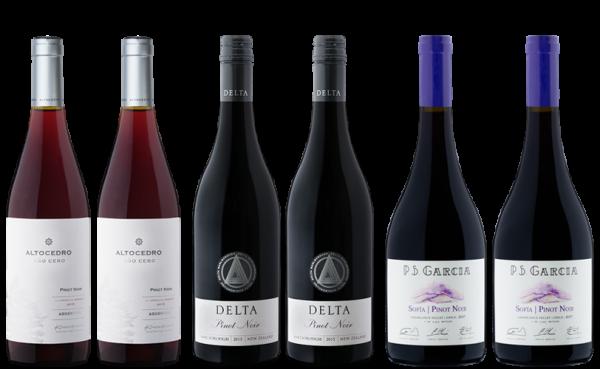 Pinot Noir Weinpaket