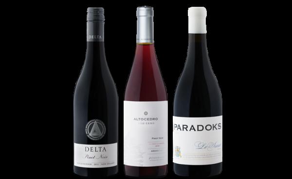 Pinot Noir Probierpaket