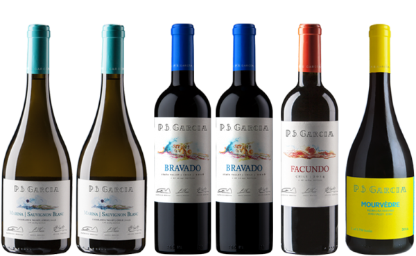 »Pacific« Weinpaket Chile