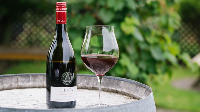 Rotweinglas für Pinot Noir