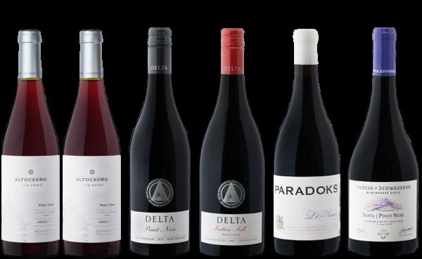 Pinot Noir Entdeckerpaket