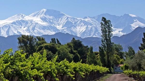 Weine-aus-Argentinien-Mendoza-Weinbaugebiet